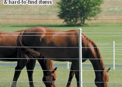 Home-Electric-Equine-and-Horse-Fence